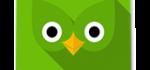 دانلود اپلیکیشن یادگیری زبان خارجی برای اندرویدDuolingo ...
