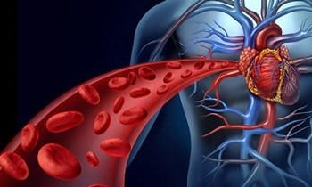 12 نشانه گردش خون ضعیف در بدن