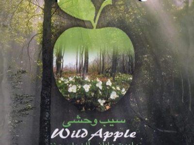 دانلود ماندگارترین اکسیژن ,تکنو , دنس ها – آلبوم « سیب وحشی » هنرمندان مختلف