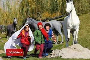 دانلود فیلم ایرانی دزد و پری 2