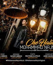 دانلود آهنگ جدید محمد نجم به نام چه حالیه + آذر ۹۶