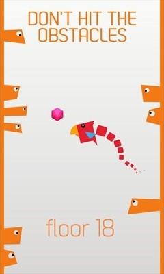 Bird-Climb-4