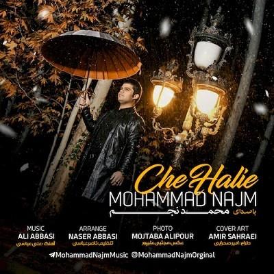 دانلود آهنگ جدید محمد نجم به نام چه حالیه