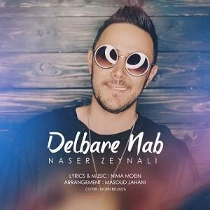 دانلود آهنگ جدید ناصر زینلی به نام دلبر ناب