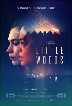 دانلود فیلم Little Woods 2018
