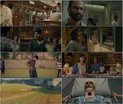 دانلود فیلم chhichhore 2019 گستاخ